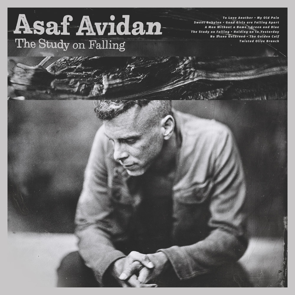 asaf-avidan-the-study-on-falling.jpg
